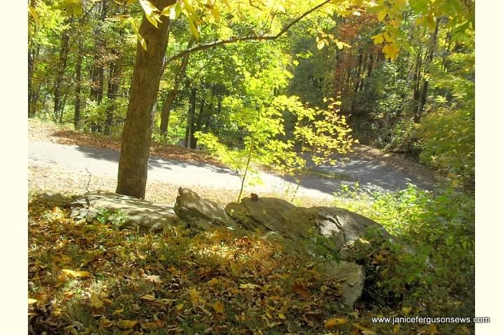 rock  road