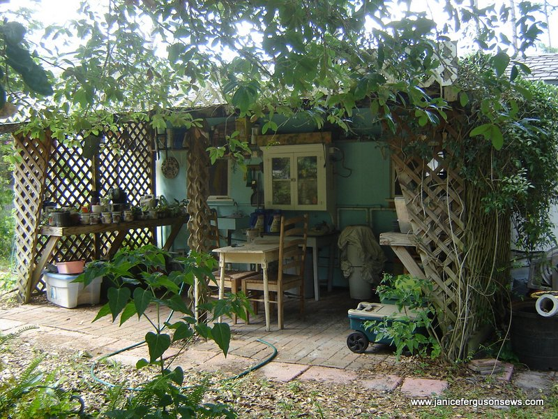 I LOVE my potting shed.  Bob built this for me about 10 years ago.  I need to spend more time there.