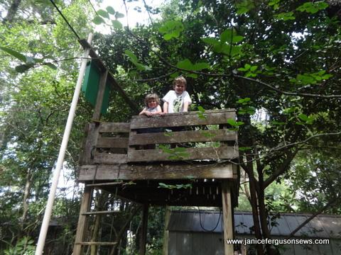 a-v-treehouse