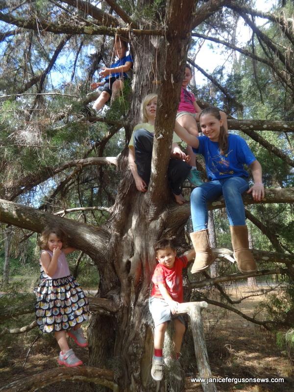 tree-w-kids